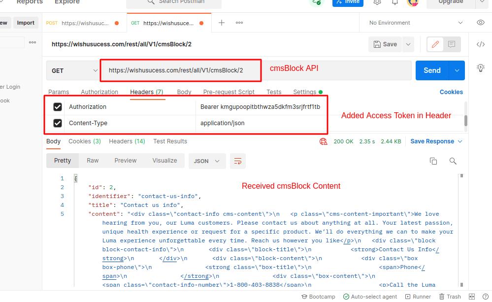 Magento 2 CMS Block REST API